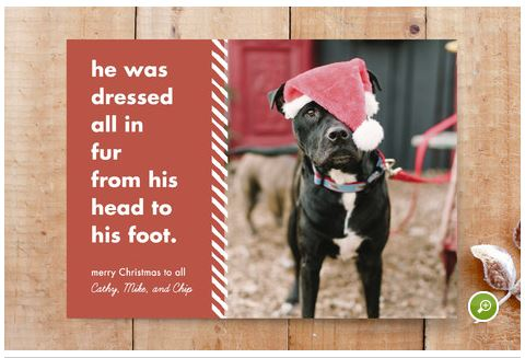 Santa Paws Photo Christmas Card